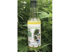 Hemp Gingerale with Turmeric